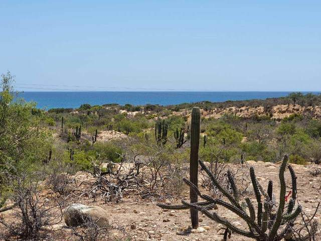 El Cardonal  Coast Road, East Cape, BS  (MLS #20-1803) :: Coldwell Banker Riveras
