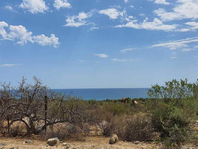 El Cardonal Coast Road, East Cape, BS  (MLS #20-1804) :: Coldwell Banker Riveras