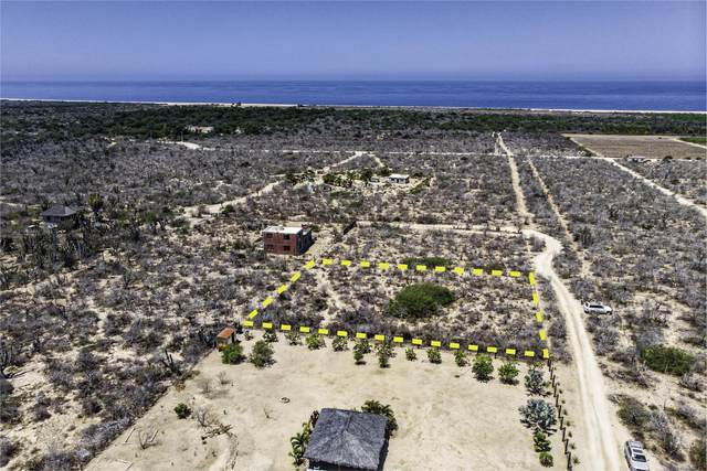 Las Playitas, Pacific, BS  (MLS #20-1806) :: Coldwell Banker Riveras