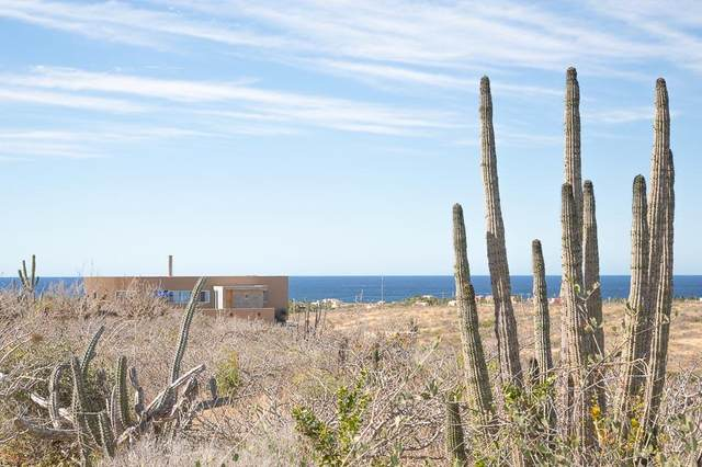 0621 Alta Vista, Pacific, BS  (MLS #20-1823) :: Own In Cabo Real Estate