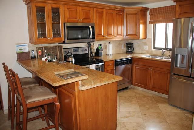El Zalate Penthouse Villa 3 #603, San Jose del Cabo, BS  (MLS #20-1828) :: Own In Cabo Real Estate