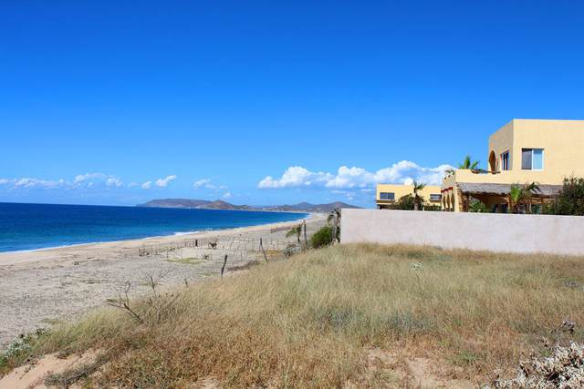 Rancho Nuevo Beacfront, Pacific, BS  (MLS #20-1832) :: Own In Cabo Real Estate