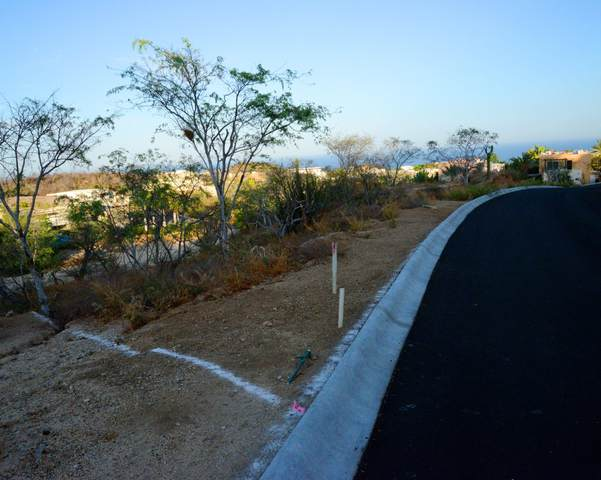 3-A Calle 1, Cabo Corridor, BS  (MLS #20-1889) :: Own In Cabo Real Estate