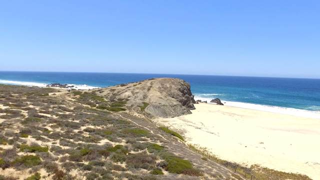 N/A Km.83, Highway 19 Elias Calles, Pacific, BS  (MLS #20-1930) :: Own In Cabo Real Estate