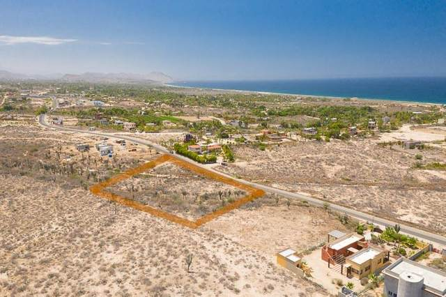 Camino Las Playitas, Pacific, BS  (MLS #20-1949) :: Own In Cabo Real Estate