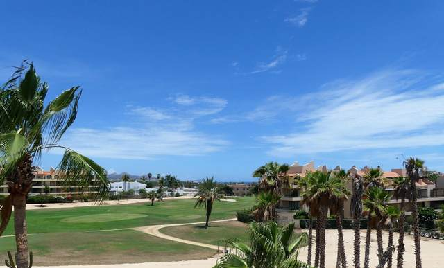 Punta Palmilla Drive 304 V7 Ph1, San Jose del Cabo, BS  (MLS #20-1986) :: Own In Cabo Real Estate