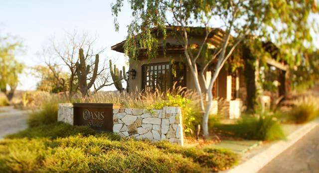 Oasis Palmilla, San Jose Corridor, BS  (MLS #20-1990) :: Own In Cabo Real Estate