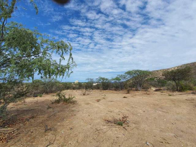 Los Barriles, East Cape, BS  (MLS #20-1998) :: Coldwell Banker Riveras