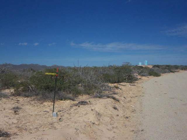 Cabo Vinorama Estates Lot 127, East Cape, BS  (MLS #20-2130) :: Own In Cabo Real Estate