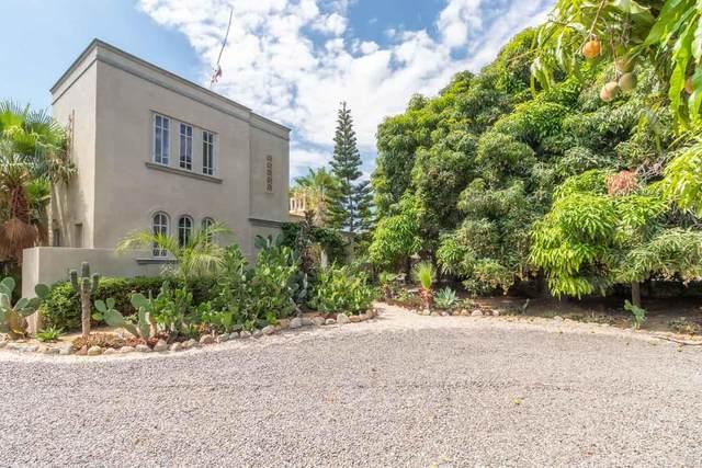 Calle De Los Mangos, Pacific, BS  (MLS #20-2133) :: Own In Cabo Real Estate