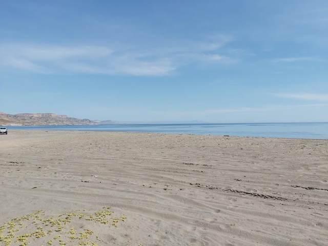 Carr. A San Juan De La Costa, La Paz, BS  (MLS #20-2181) :: Coldwell Banker Riveras