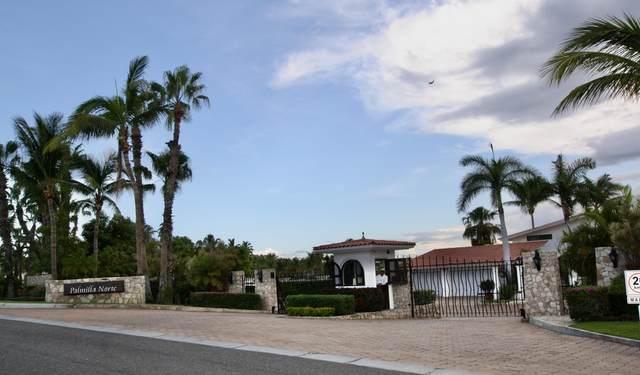 Calle Palmilla Norte, San Jose Corridor, BS  (MLS #20-2184) :: Own In Cabo Real Estate