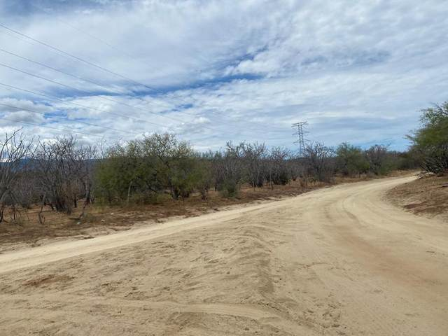 Carretera Transpenisular, East Cape, BS  (MLS #20-2198) :: Own In Cabo Real Estate