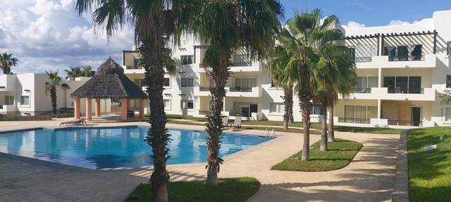 Via De Lerry #316, Cabo San Lucas, BS  (MLS #20-2281) :: Coldwell Banker Riveras