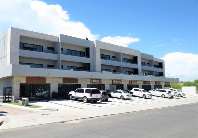 Blvd. Antonio Mijares 8A, San Jose del Cabo, BS  (MLS #20-2302) :: Own In Cabo Real Estate