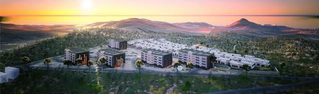 Harmonia Homesite 24, San Jose Corridor, BS  (MLS #20-2308) :: Own In Cabo Real Estate