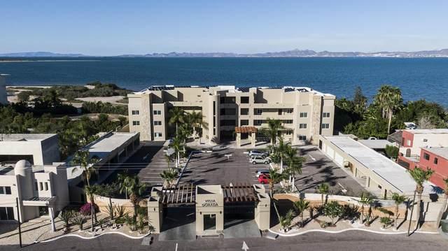 Vista Dorada #0, La Paz, BS  (MLS #20-2319) :: Own In Cabo Real Estate