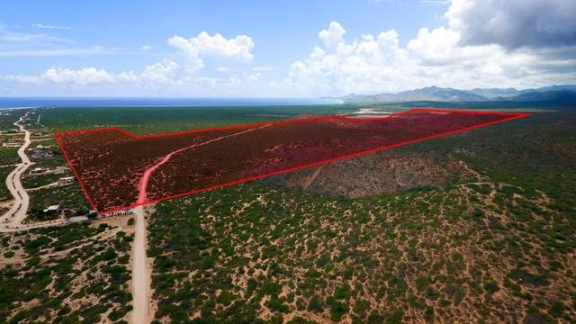 Road To Cabo Pulmo, East Cape, BS  (MLS #20-2327) :: Coldwell Banker Riveras