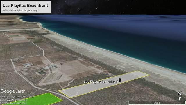 Las Playitas Beachfront, Pacific, BS  (MLS #20-2336) :: Ronival