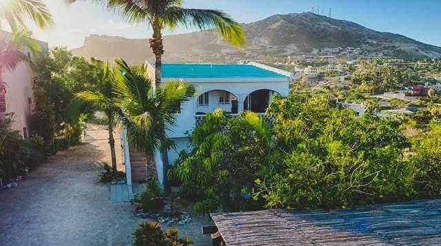Gringo Hill Bluff, San Jose del Cabo, BS  (MLS #20-2408) :: Coldwell Banker Riveras