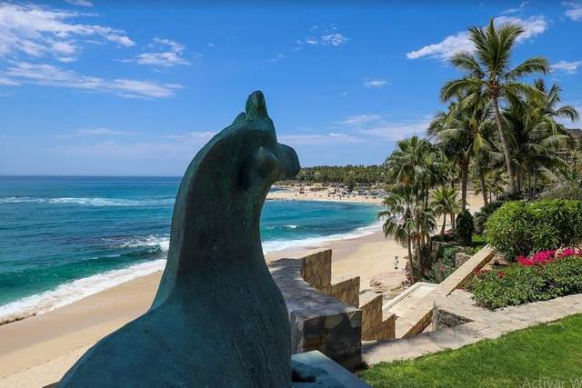 Palmilla Norte, San Jose Corridor, BS  (MLS #20-2419) :: Own In Cabo Real Estate