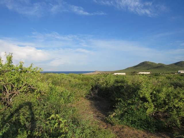 Paseo De Las Haciendas, Pacific, BS  (MLS #20-2478) :: Ronival