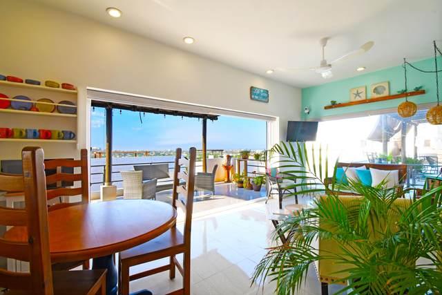 Las Pergolas -, La Paz, BS  (MLS #20-2479) :: Own In Cabo Real Estate