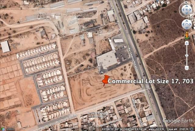 Leona Vicario & Del Concho St, Cabo San Lucas, BS  (MLS #20-2483) :: Own In Cabo Real Estate