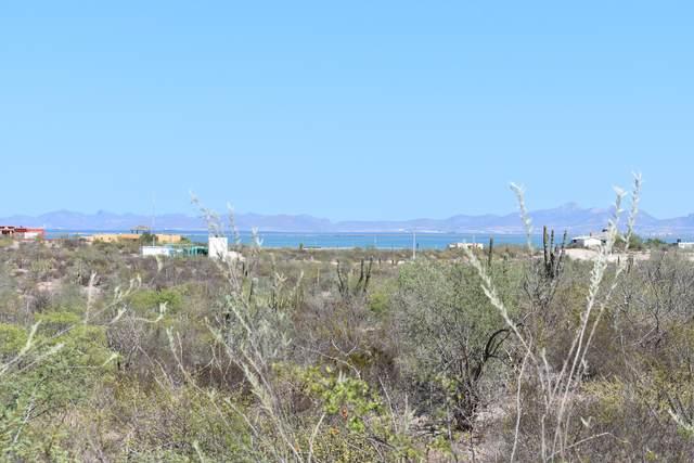 641 Retorno Ciruelo, La Paz, BS  (MLS #20-2600) :: Own In Cabo Real Estate