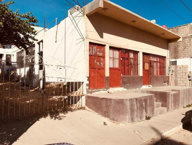 Arenal Commercial Property, Cabo San Lucas, BS  (MLS #20-2655) :: Own In Cabo Real Estate