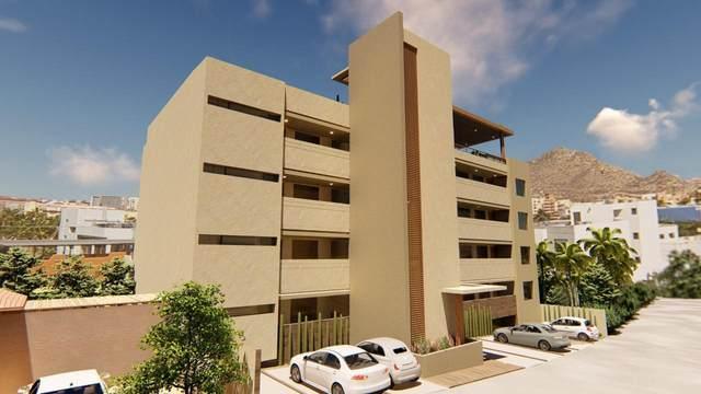 Calle De La Laguna #301, Cabo San Lucas, BS  (MLS #20-2728) :: Ronival