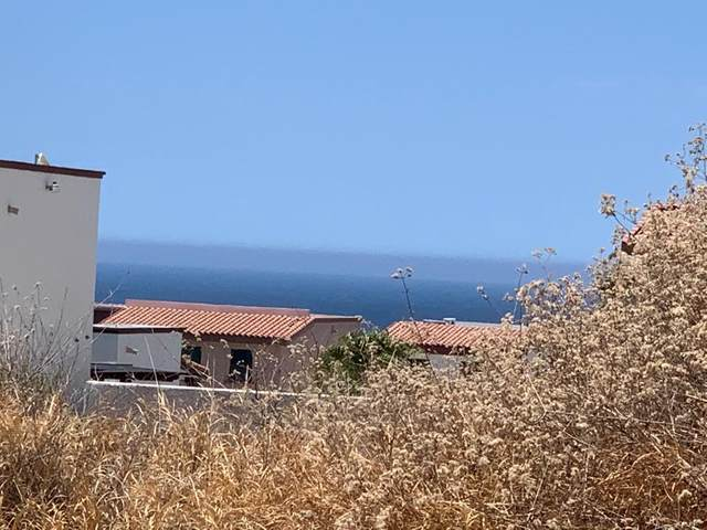 Calle Pitahayas, Cabo Corridor, BS  (MLS #20-2749) :: Own In Cabo Real Estate