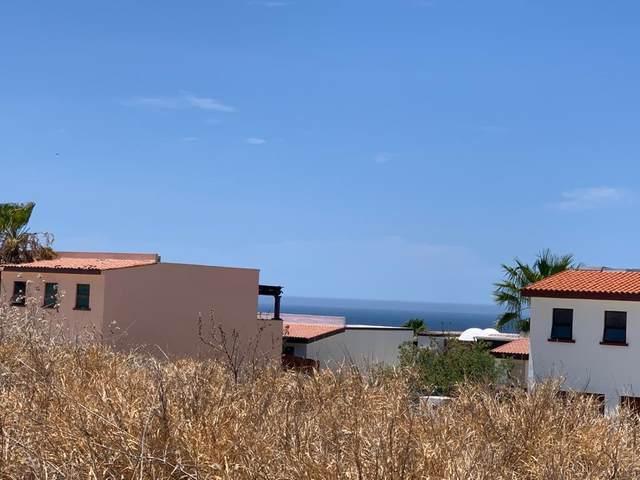 Calle Pithayas, Cabo Corridor, BS  (MLS #20-2750) :: Ronival