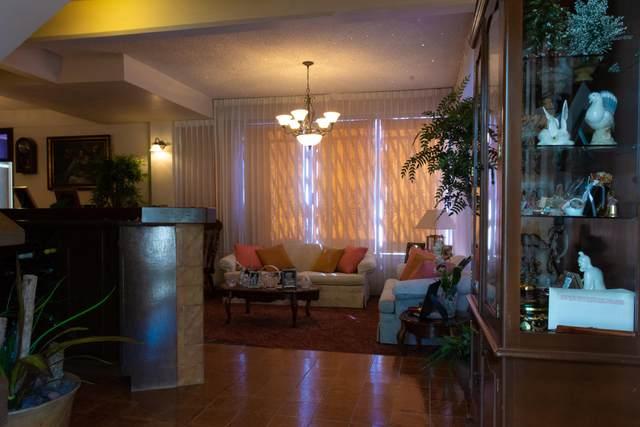 1030 Primo Verdad, La Paz, BS  (MLS #20-2769) :: Own In Cabo Real Estate