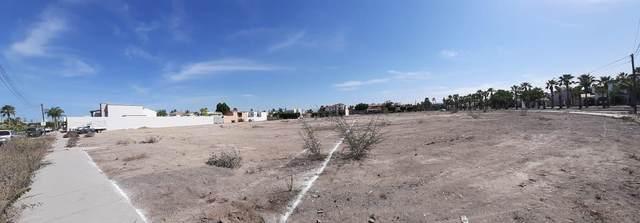 7 Ballenas, La Paz, BS  (MLS #20-2800) :: Ronival