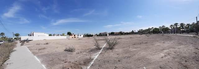 6 Ballenas, La Paz, BS  (MLS #20-2801) :: Ronival