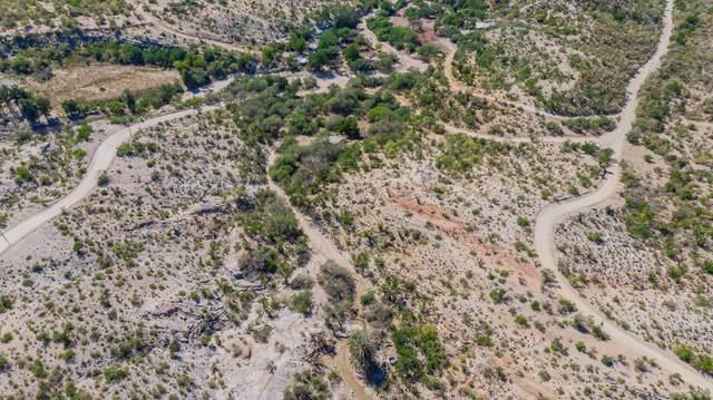 Camino A Las Huertas, San Jose del Cabo, BS  (MLS #20-2886) :: Ronival