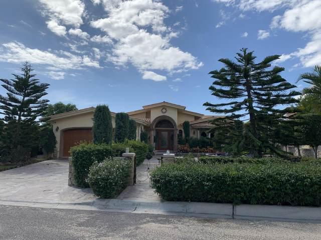De Las Brisas, Cabo Corridor, BS  (MLS #20-2903) :: Ronival