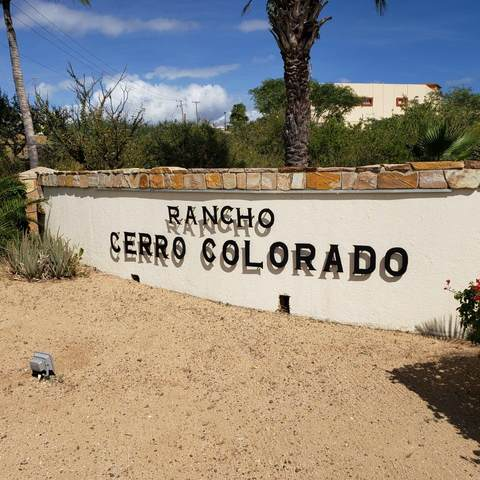 Lote 7/4 Cerro Colorado, San Jose Corridor, BS  (MLS #20-3024) :: Ronival