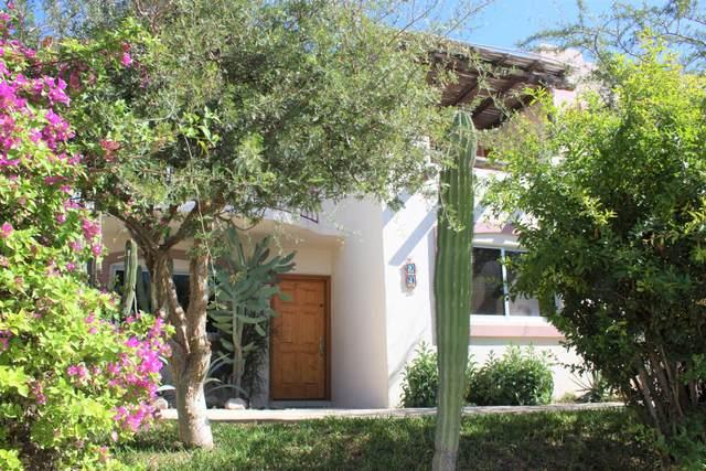 Camino Del Tezal, Cabo Corridor, BS  (MLS #20-3041) :: Own In Cabo Real Estate