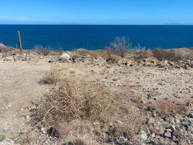 Carretera Lp- San Juan Costa, La Paz, BS  (MLS #20-3043) :: Coldwell Banker Riveras
