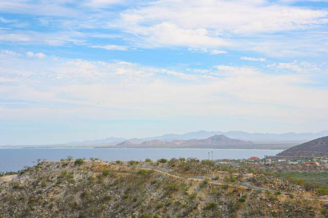 Hilltop View Lot #7, East Cape, BS  (MLS #20-3044) :: Own In Cabo Real Estate