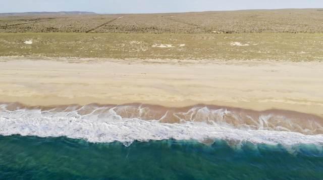 Lt.18 Camino De La Langosta& Pacific Mz. 30, Pacific, BS  (MLS #20-3058) :: Own In Cabo Real Estate