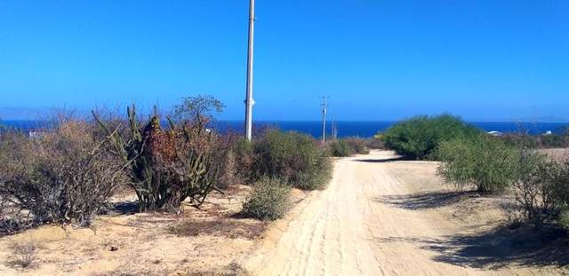 C. Jose Castro Calderon, La Paz, BS  (MLS #20-3081) :: Own In Cabo Real Estate