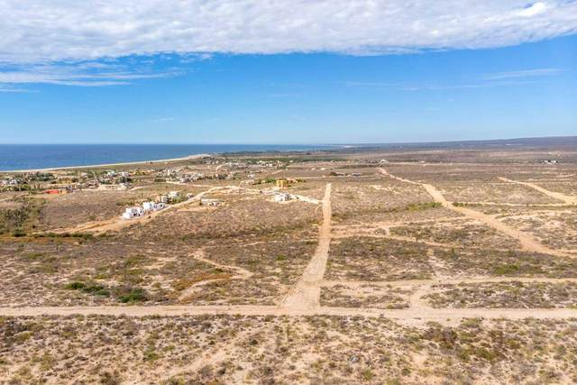 Calle S/N, Pacific, BS  (MLS #20-3136) :: Own In Cabo Real Estate