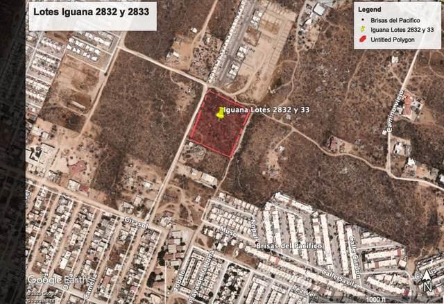 Brisas Del Pacifico, Cabo San Lucas, BS  (MLS #20-3163) :: Own In Cabo Real Estate