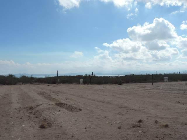 Bahia Azul, La Paz, BS  (MLS #20-3191) :: Own In Cabo Real Estate