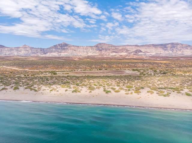 Punta Coyote, La Paz, BS  (MLS #20-3228) :: Ronival