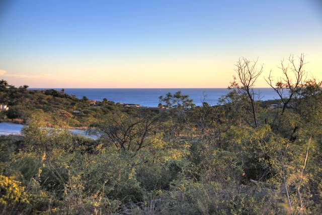 125 Ave Padre Salvatierra, San Jose del Cabo, BS  (MLS #20-3258) :: Own In Cabo Real Estate