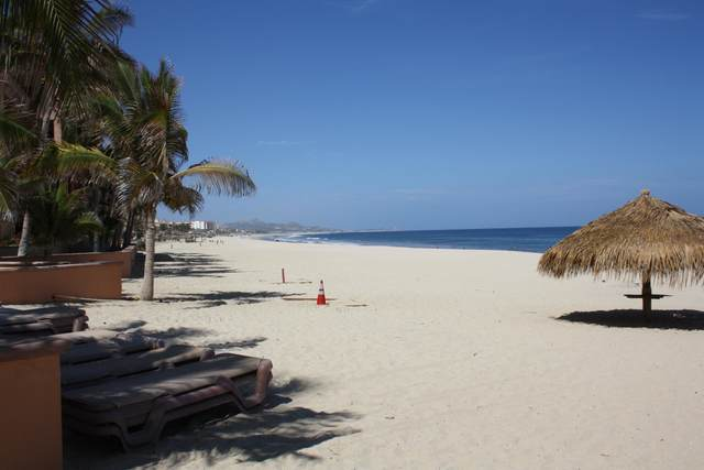 Carretera Transpeninsular E 107, San Jose del Cabo, BS  (MLS #20-3290) :: Ronival
